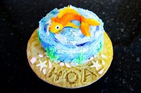 Cupcakegirl.com.au -Cakes (29)