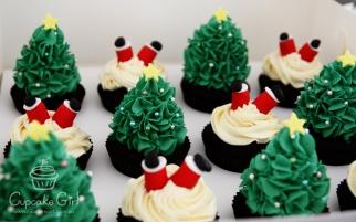 cupcakegirl.com.au - Christmas (1)