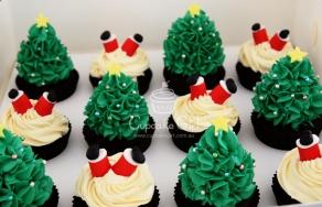 cupcakegirl.com.au - Christmas (6)