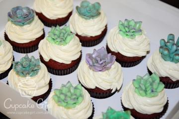 cupcakegirl.com.au - Succulents (1)