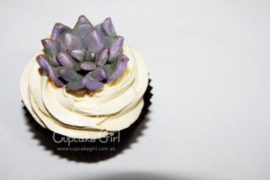 cupcakegirl.com.au - Succulents (10)