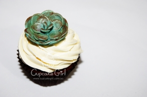 cupcakegirl.com.au - Succulents (11)