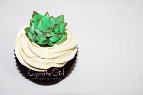cupcakegirl.com.au - Succulents (12)
