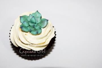 cupcakegirl.com.au - Succulents (14)
