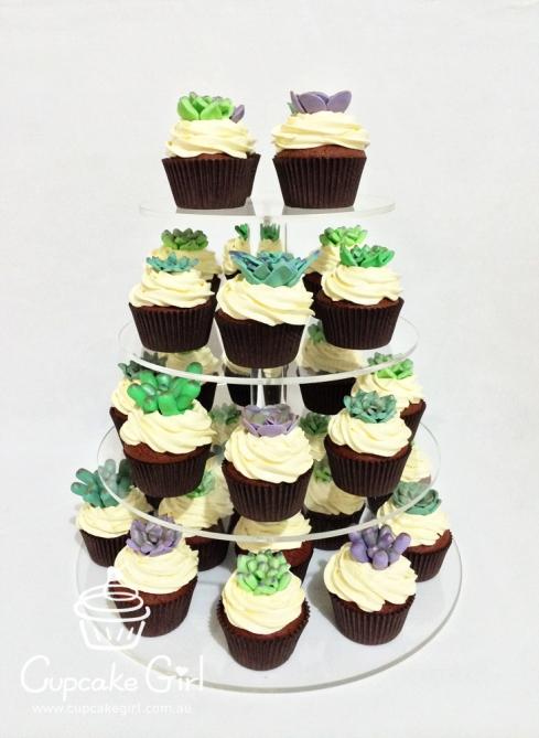 cupcakegirl.com.au - Succulents (15)
