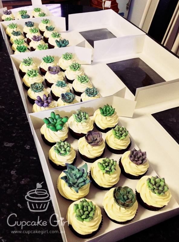 cupcakegirl.com.au - Succulents (17)