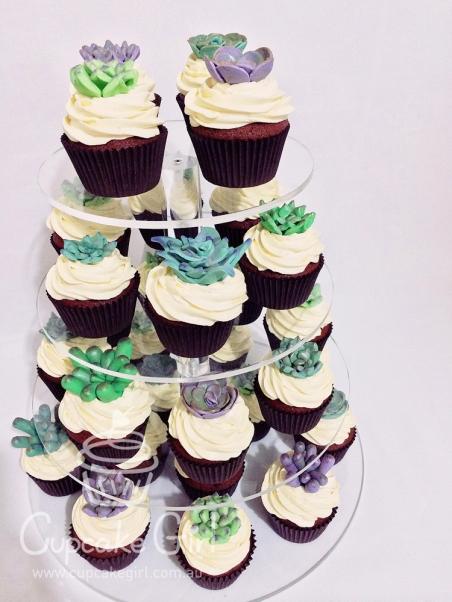 cupcakegirl.com.au - Succulents (18)