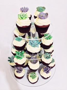 cupcakegirl.com.au - Succulents (19)