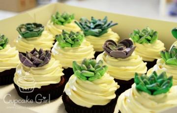 cupcakegirl.com.au - Succulents (2)