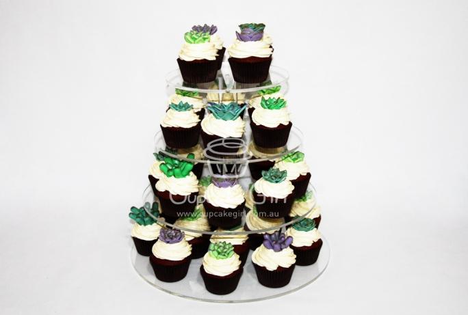 cupcakegirl.com.au - Succulents (3)