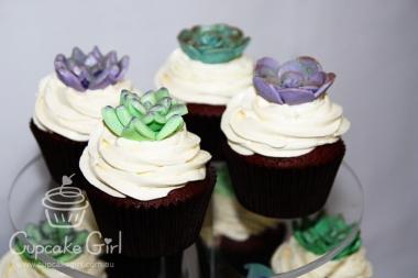 cupcakegirl.com.au - Succulents (4)
