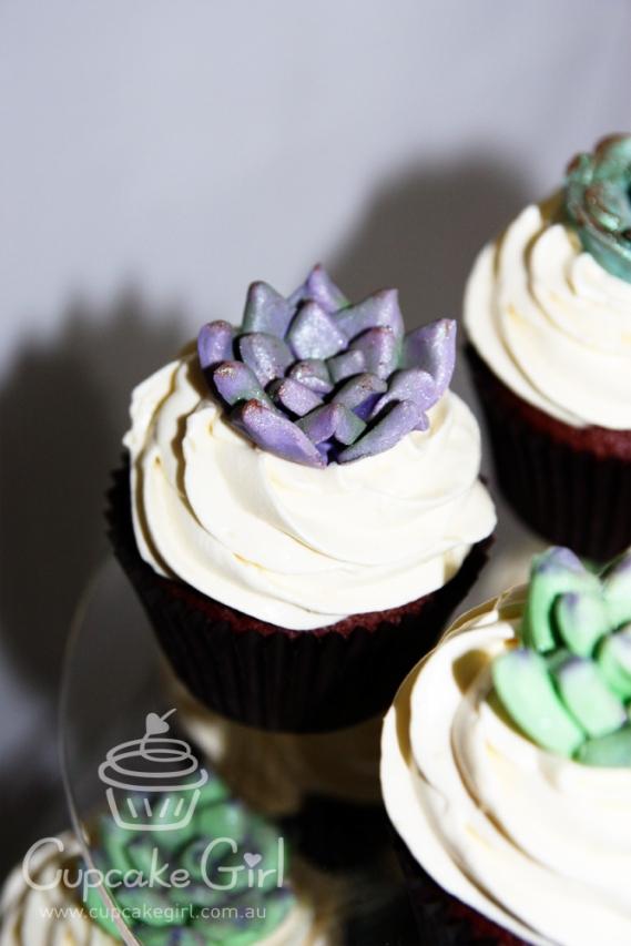 cupcakegirl.com.au - Succulents (6)