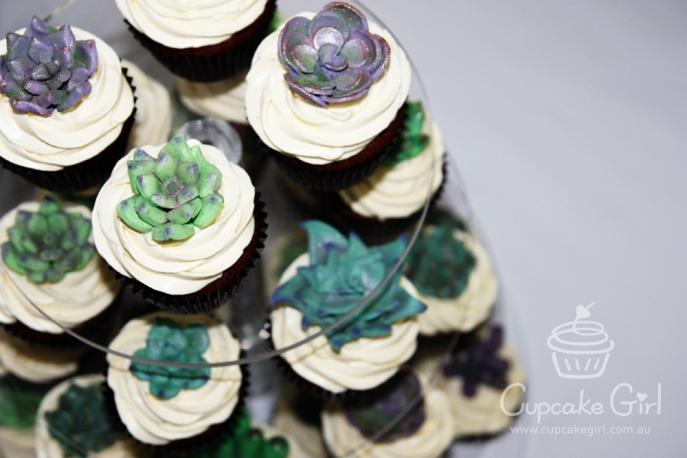 cupcakegirl.com.au - Succulents (7)