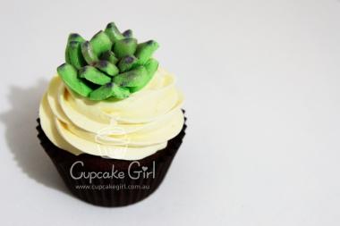 cupcakegirl.com.au - Succulents (9)